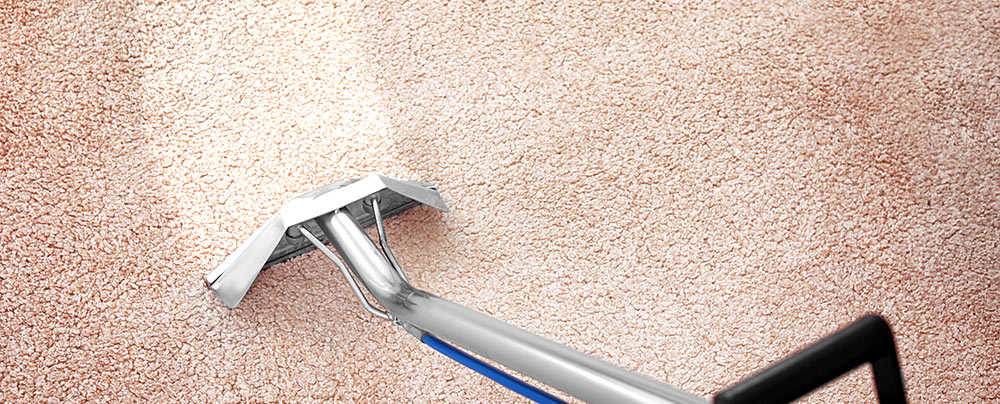 bj carpet cleaning whangarei cleaner